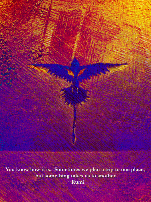Words by Rumi. Co-Creative artwork by Katherine Gerardi and Greg Frucci, 2013. Katherine took one of my paintings of the Bermuda Longtail and altered the color and texture.