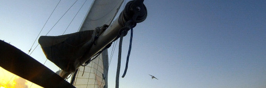 longtail under sail